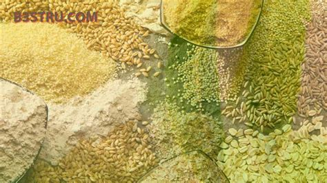 How to safeguard pulse grains   B3STRU in your house what